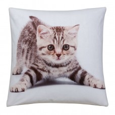Cushion Cover Kitty 43cm