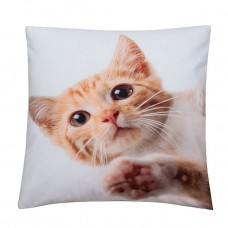 Cushion Cover Tabby 43cm